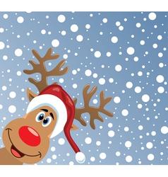 red nosed reindeer vector image