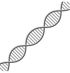 Dna symbol vector