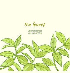 Green tea leaves vector