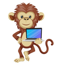 monkey with lap top on white background vector image