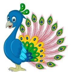 Peacock cartoon for you design vector