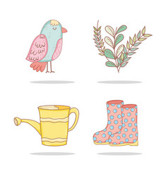 set bird with exotic plants and watering can vector image