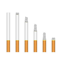 set of burning cigarette vector image
