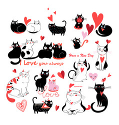 set of enamored cats vector image