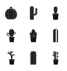 succulent icon set simple style vector image