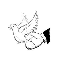 white dove symbol design vector image