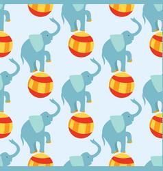 circus funny performance elephant animal vector image vector image