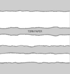 torn paper picture design vector image