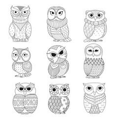 9 owls coloring books vector