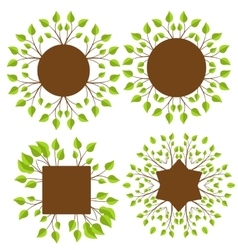 Branches With Leaves vector image