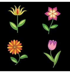 Flower icons set Chamomile tulip orchid Floral vector image