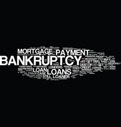 loans after bankruptcy text background word cloud vector image