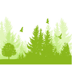 nature background with firs vector image
