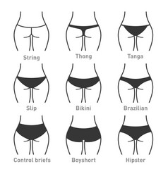 woman underwear panties types vector image