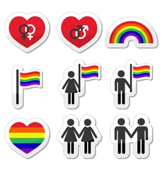 Gay and lesbian couples rainbow icons set vector image