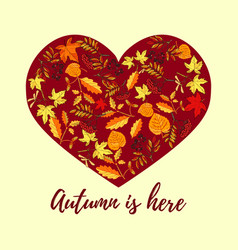 autumn card with hand drawn colored autumn leaves vector image