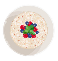 closeup of oatmeal with fruits isolated vector image