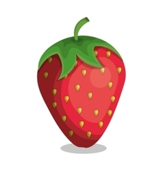 delicious fruit strawberry isolated icon vector image