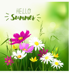 hello summer background vector image