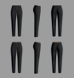 realistic formal trousers for women vector image
