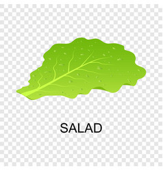 salad icon isometric style vector image