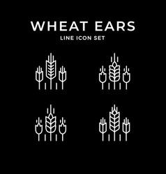 set line icons wheat ears vector image