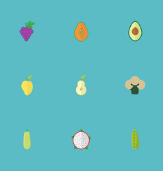 flat icons cluster mango bean and other vector image vector image