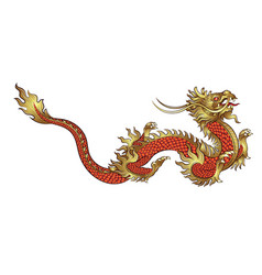 Hand drawn golden chinese dragon vector