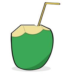 Coconut water vector image vector image