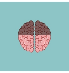 Colorful brain design over white background vector image
