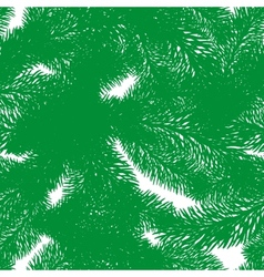 evergreen vector image