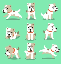 Cartoon character alabai dog poses set vector