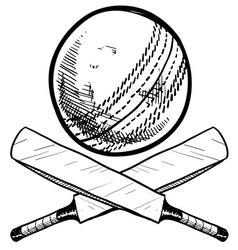 doodle cricket ball bat vector image