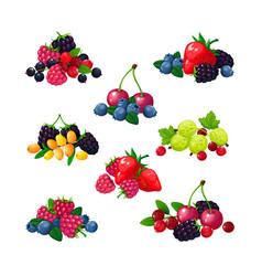 fresh summer berries piles raspberry currant vector image