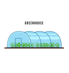 greenhouse with green plants inside in flat style vector image