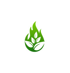 nature fire logo icon design vector image