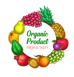 Tropical fruits organic farm round banner vector