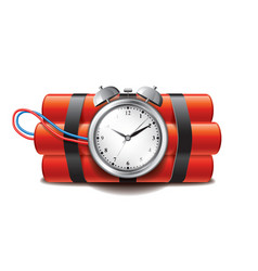 bomb clock timer isolated vector image vector image