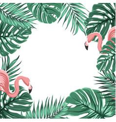 tropical border frame leaves pink flamingo birds vector image