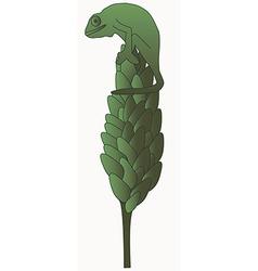 chameleon 1v vector image