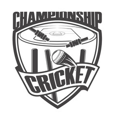 Cricket championship field vector