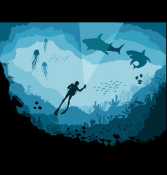 Divers and sharks reef underwater wildlife vector