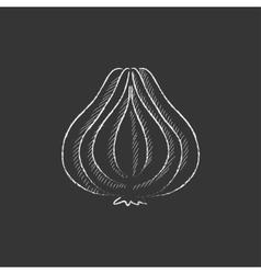 Garlic Drawn in chalk icon vector