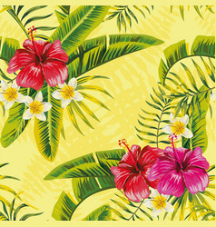 hibiscus tropic leaves plumeria pattern vector image
