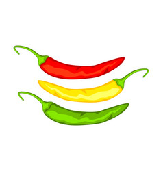 multicolor cartoon hot chilli pepper vector image