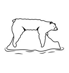 Polar bear wild animal in iceberg icon vector