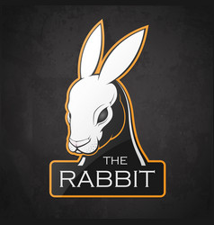 rabbit on a dark background vector image