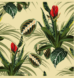 seamless pattern red lilies flowers bud vector image