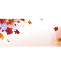 watercolor autumn banner on white background vector image