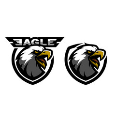 Head of the eagle sport logo two versions vector
